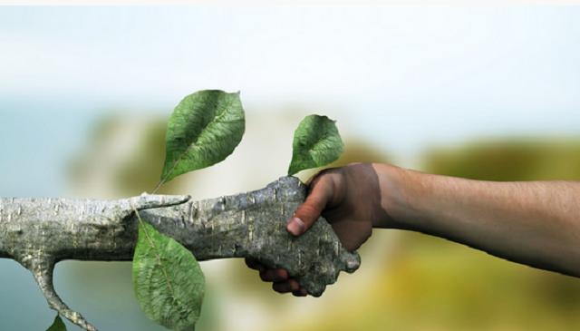 Cum are grijă statul de cetățeni – doar e bifat pe hîrtie o  strategie de mediu